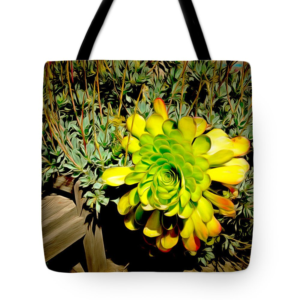 Succulent Study Tote Bag featuring the painting Succulent Study by Barbara Snyder