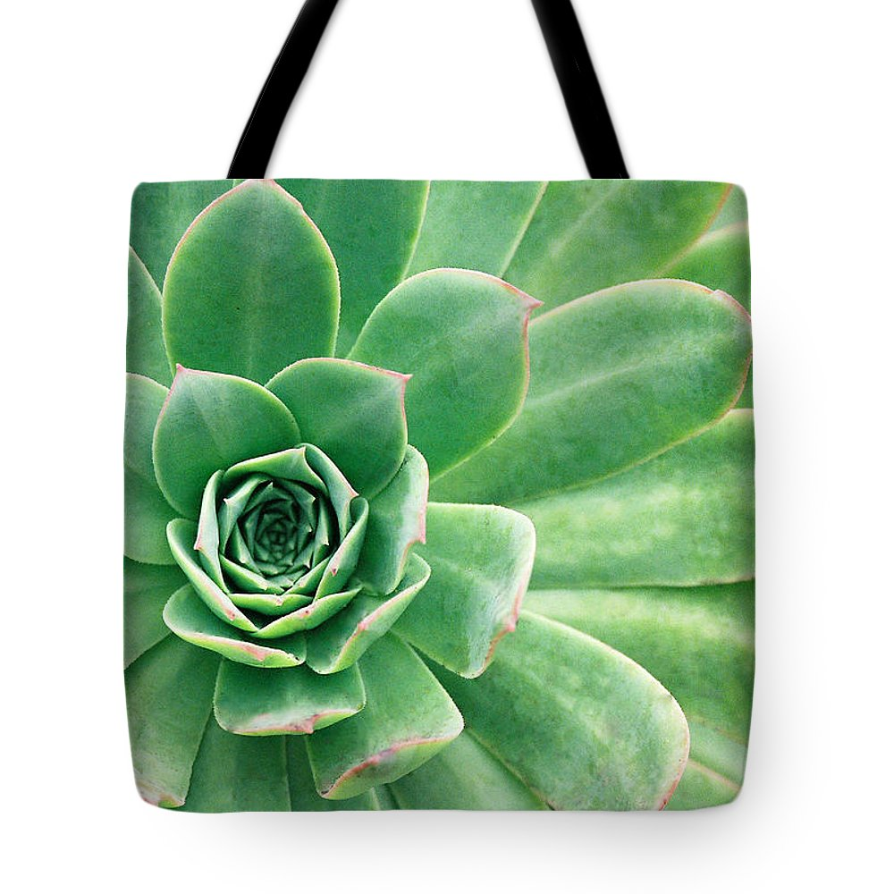 Plants Tote Bag featuring the photograph Succulents II by Angie Schutt