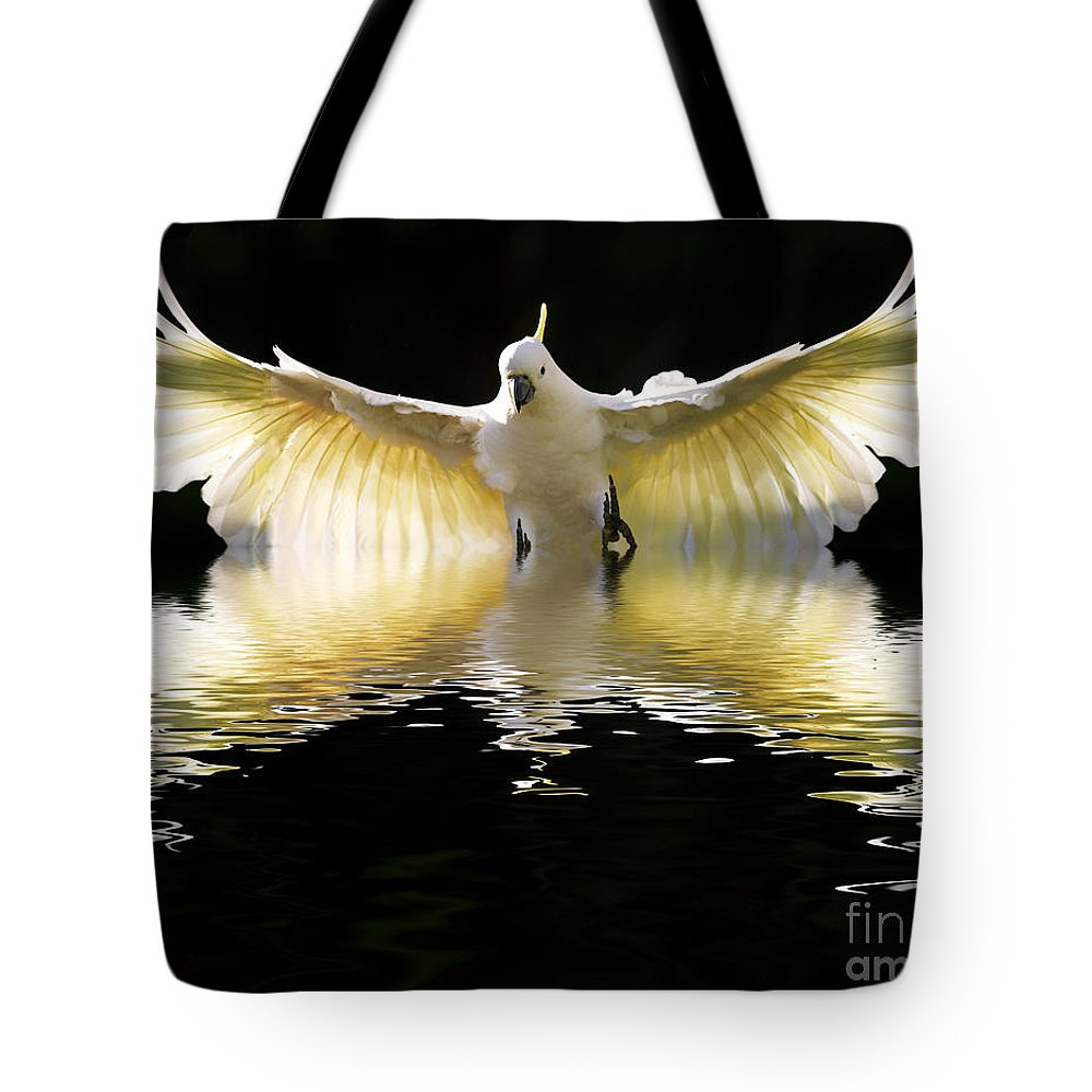 Bird In Flight Tote Bag featuring the photograph Sulphur Crested Cockatoo Rising by Sheila Smart Fine Art Photography
