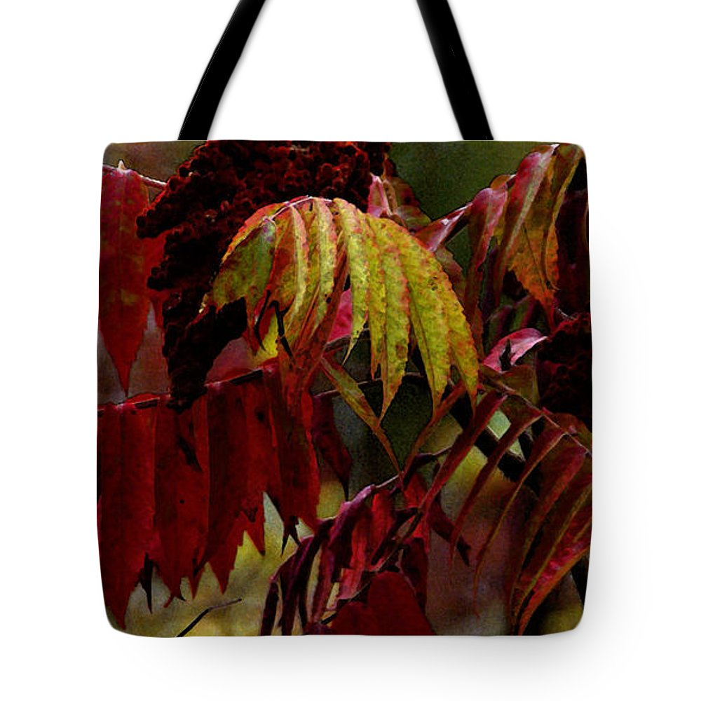 Sumac Tote Bag featuring the photograph Sumac by Linda Shafer