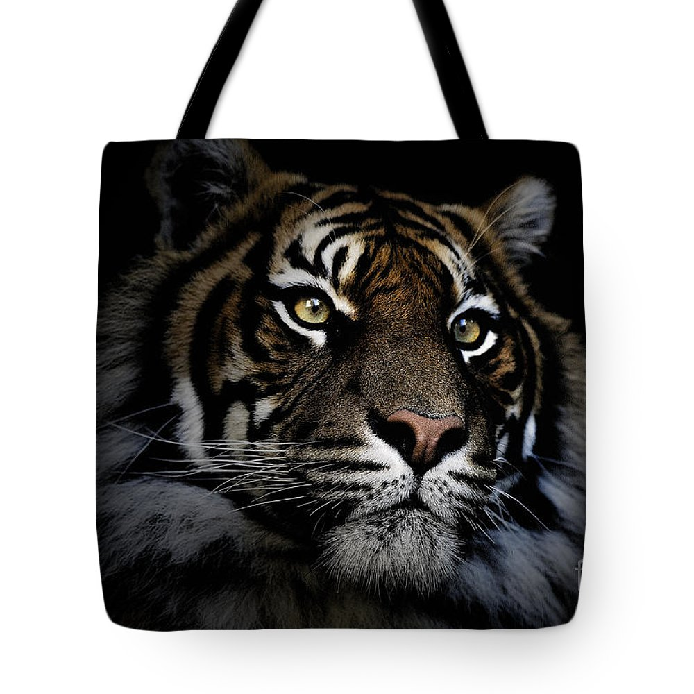 Sumatran Tiger Wildlife Endangered Tote Bag featuring the photograph Sumatran Tiger by Sheila Smart Fine Art Photography