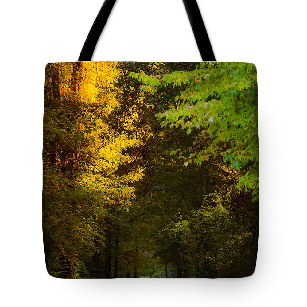 Path Tote Bag featuring the photograph Summer And Fall Collide by Parker Cunningham