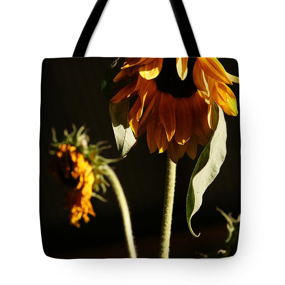 Summer Tote Bag featuring the photograph Summer And The Beat Of Your Heart by Linda Shafer
