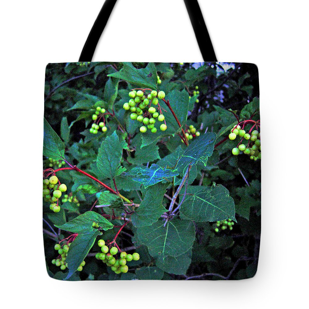 Hi Bush Cranberries And Leaves Tote Bag featuring the photograph Summer Berries by Joanne Smoley