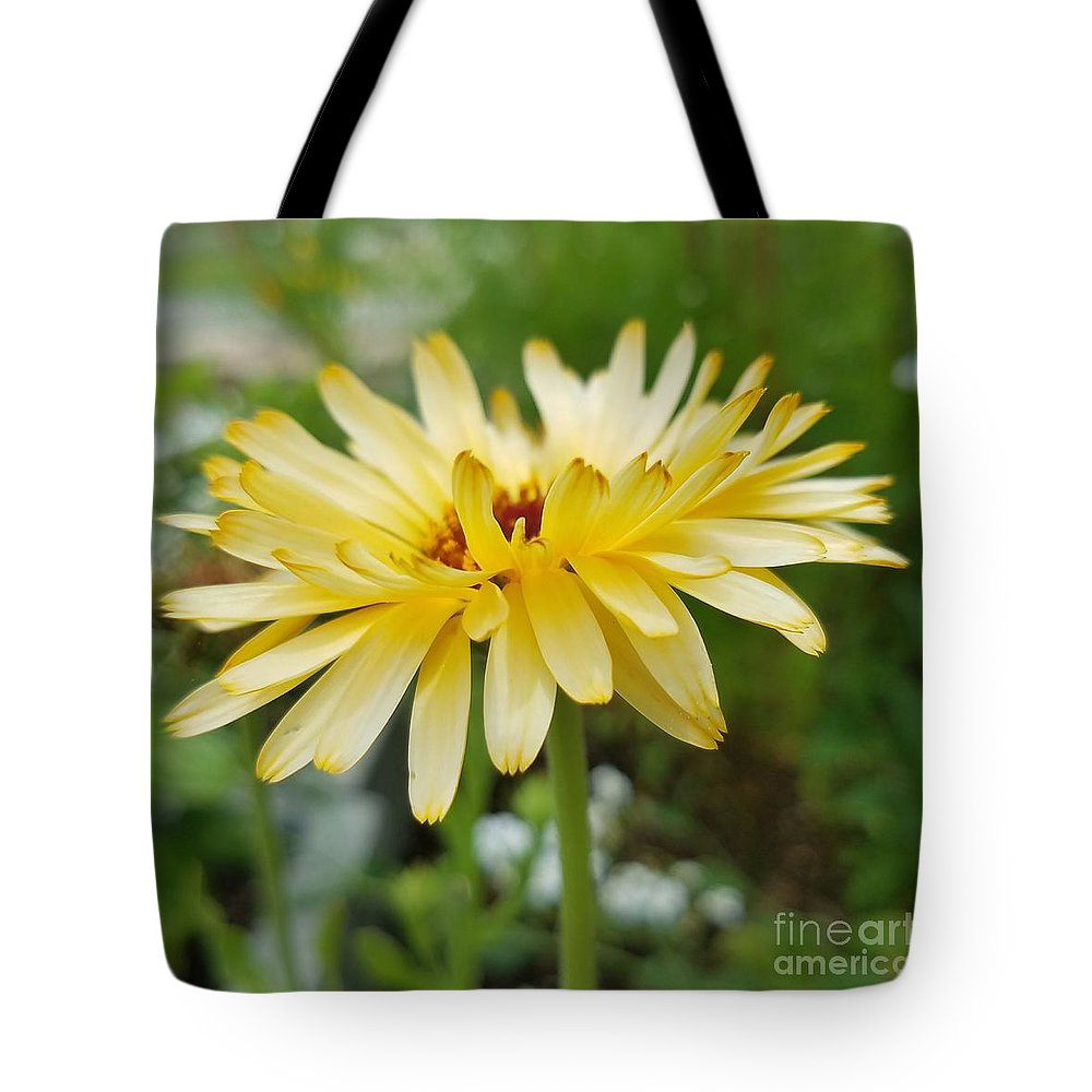 Summer Bloom Tote Bag featuring the photograph Summer Bloom by Maria Urso