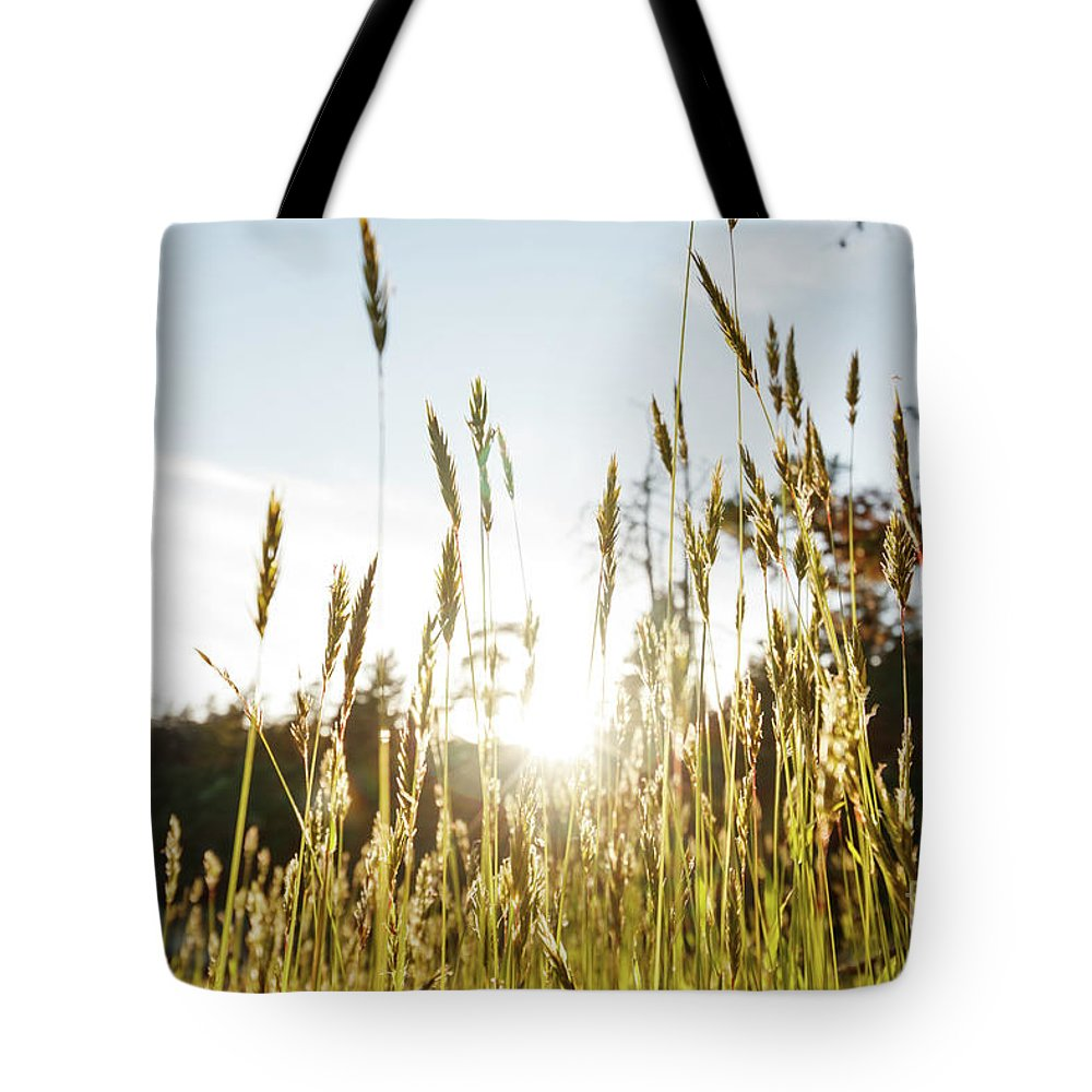 Summer Tote Bag featuring the photograph Summer Breeze by Marc Stuelken