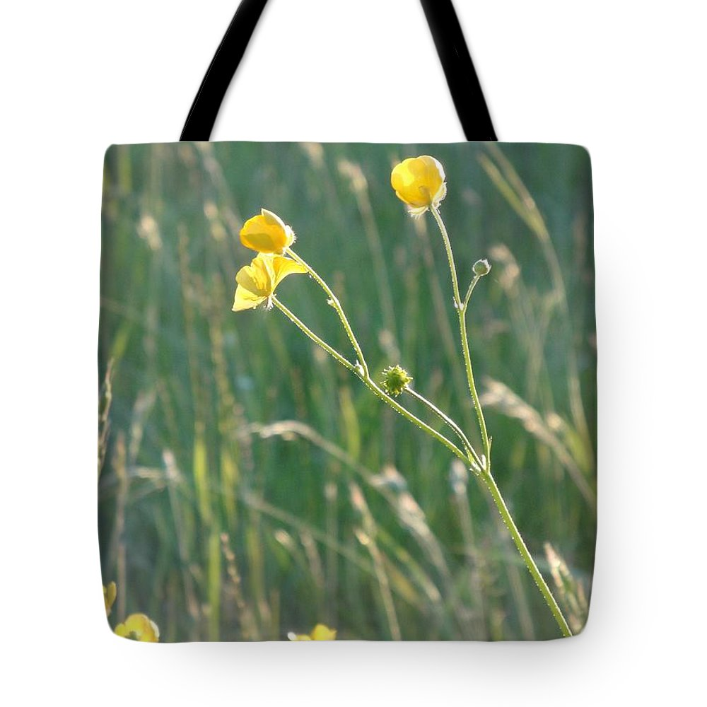 Flowers Tote Bag featuring the photograph Summer Buttercups by Susan Baker