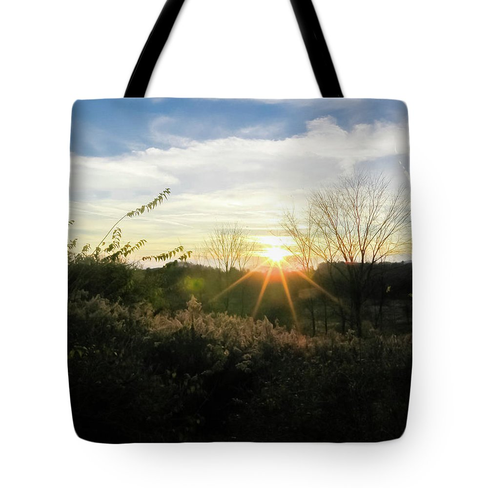 Sunny Day Tote Bag featuring the photograph Summer Day Going Into Evening. by Amy Bishop