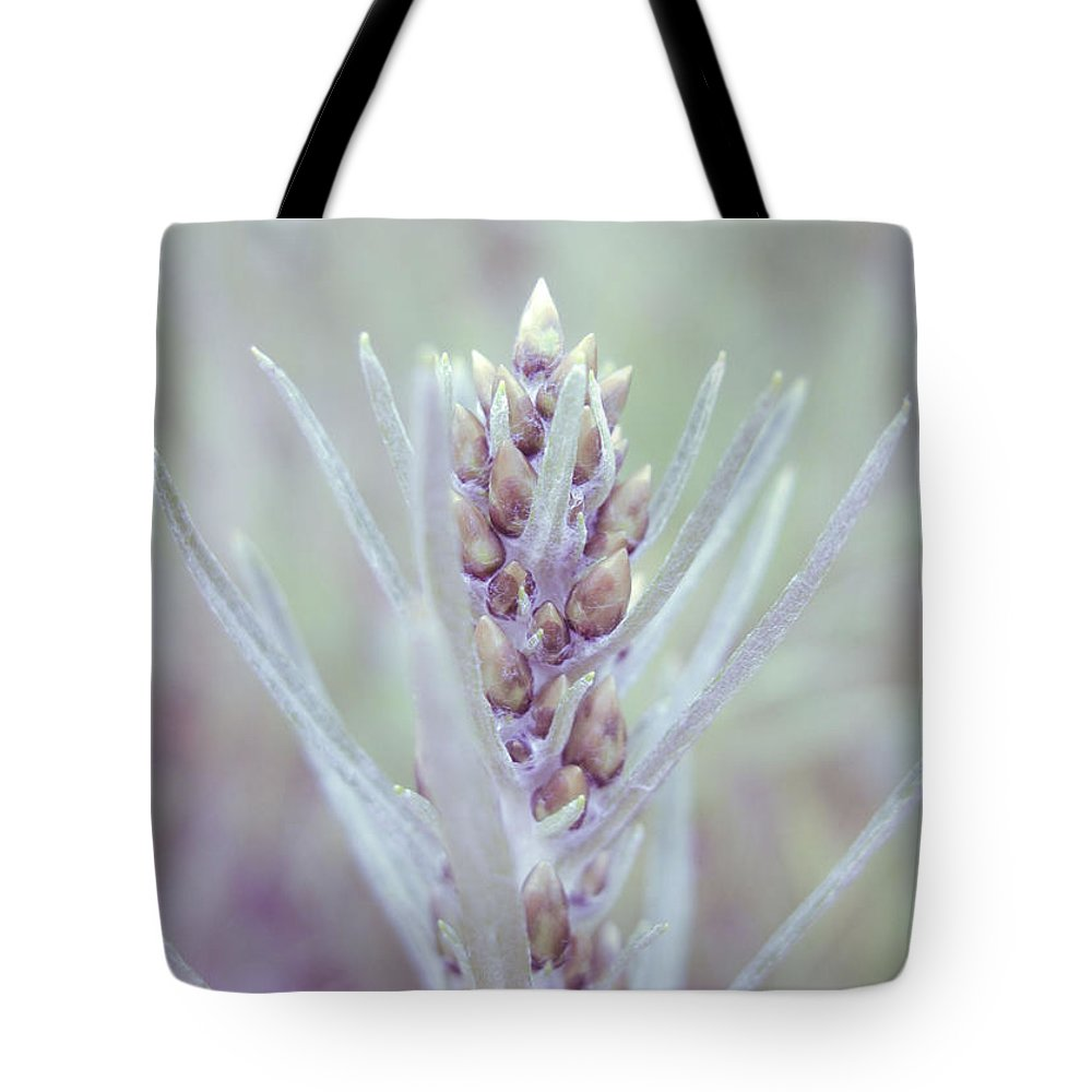 Forest Tote Bag featuring the photograph Summer Flora by Irina Effa