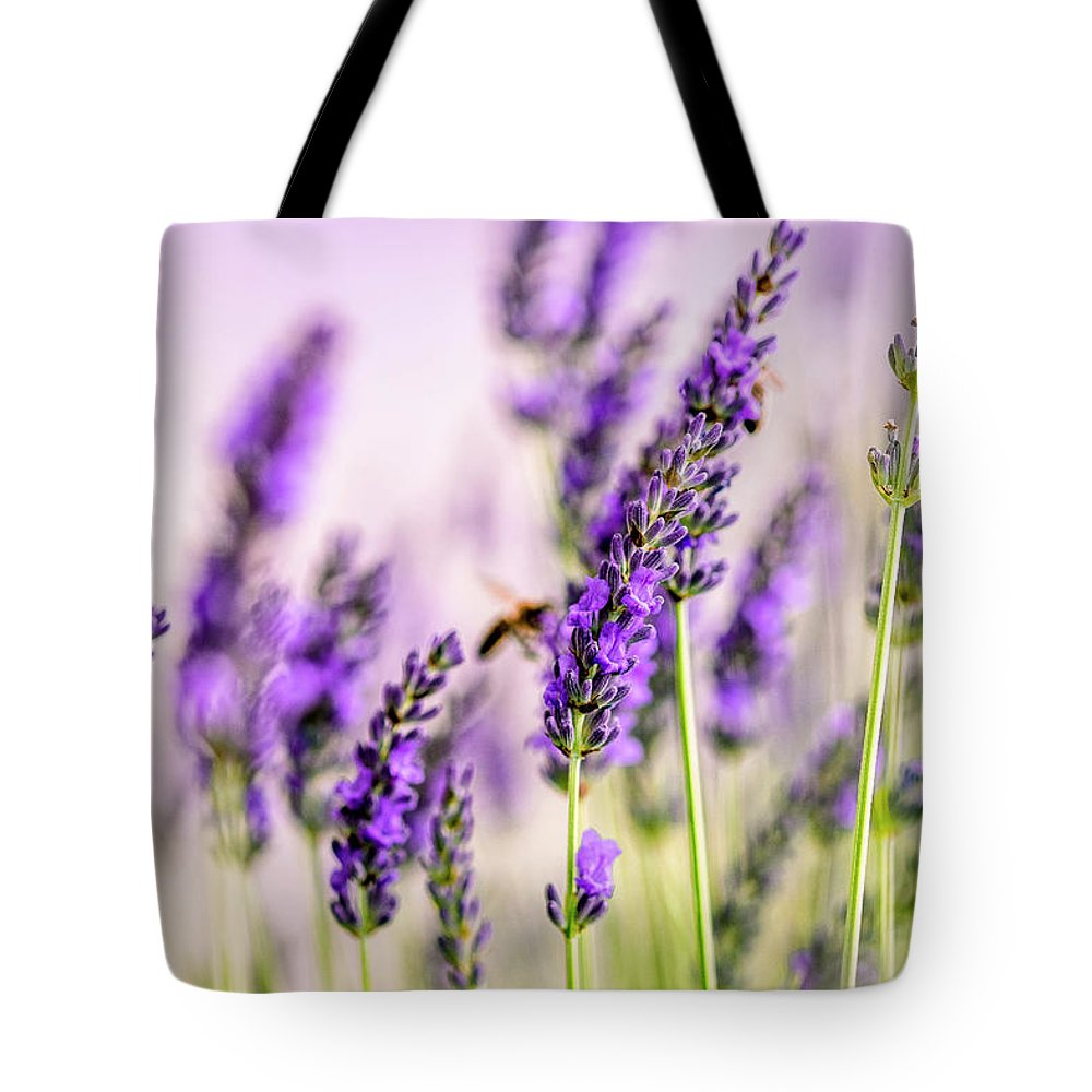 Lavender Tote Bag featuring the photograph Summer Lavender by Nailia Schwarz