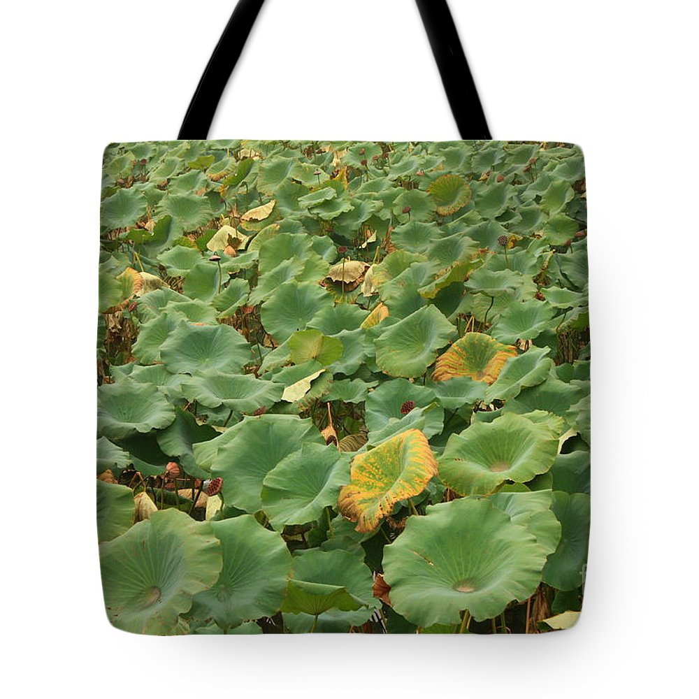 Summer Palace Tote Bag featuring the photograph Summer Palace Lotus Pond by Carol Groenen