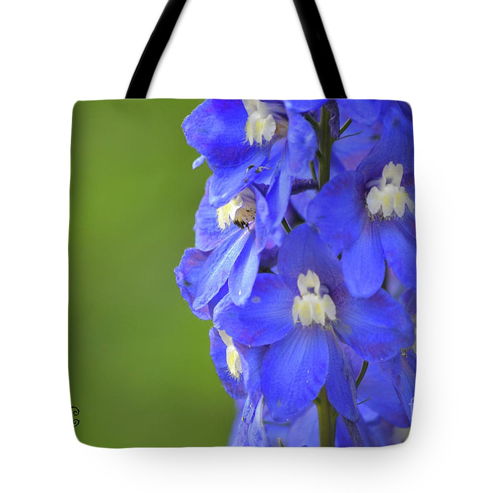Blue Tote Bag featuring the photograph Summertime by Traci Cottingham