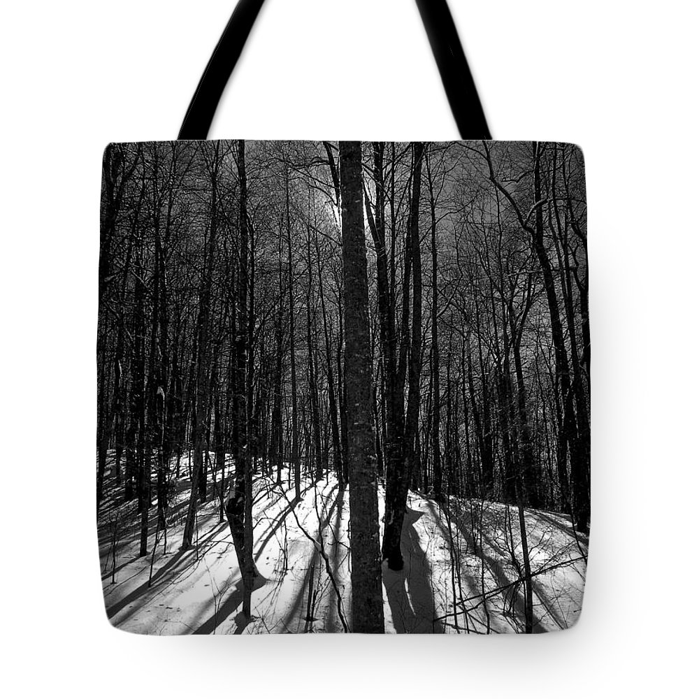 Forest Tote Bag featuring the photograph Sun Attempt To Warm by Dale Chapel