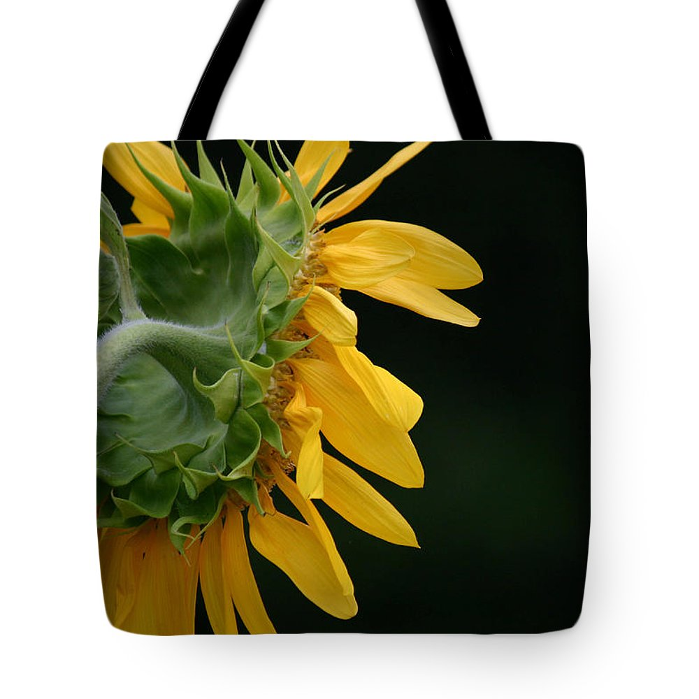 Tote Bag featuring the photograph Sun Flower On Black by Colleen Gartner