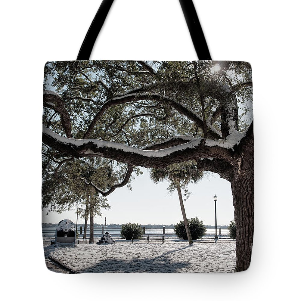 Snow Tote Bag featuring the photograph Sun Gleaming Through The Snow by Dale Powell