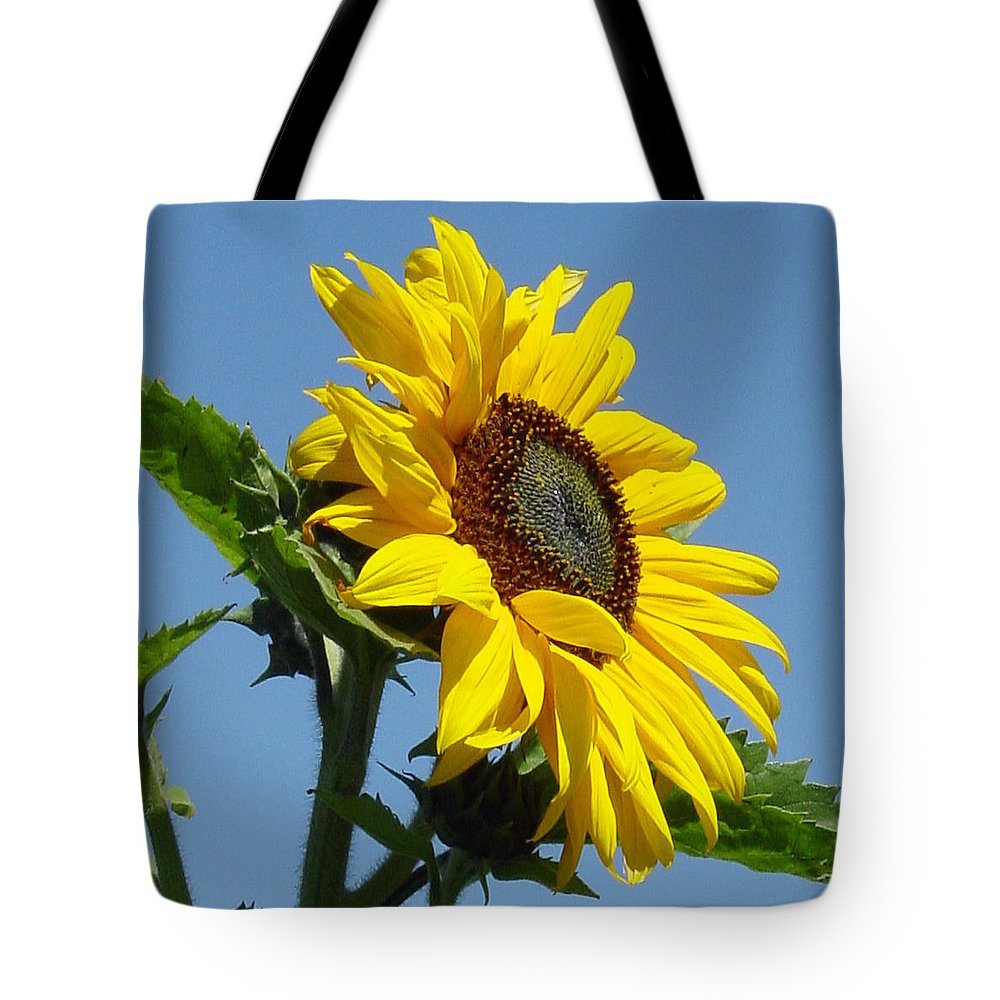 Sunflower Tote Bag featuring the photograph Sun Goddess by Suzanne Gaff