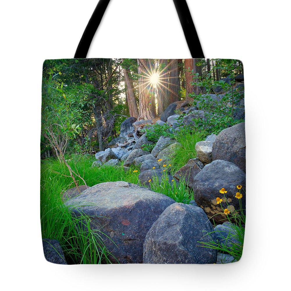 National Park Tote Bag featuring the photograph Sun In The Sequoias by Idaho Scenic Images Linda Lantzy