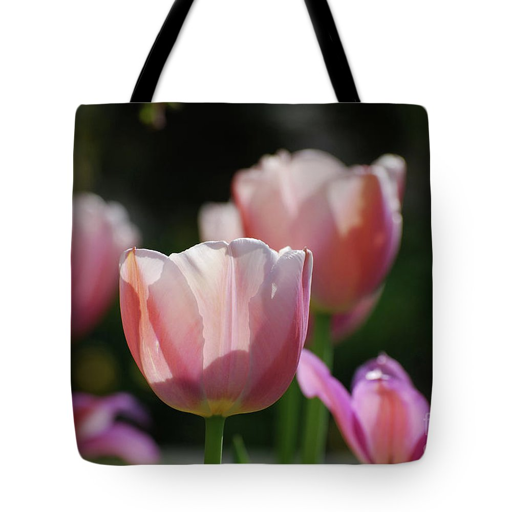 Tulip Tote Bag featuring the photograph Sun Shining Through The Pink Petals Of A Tulip by DejaVu Designs