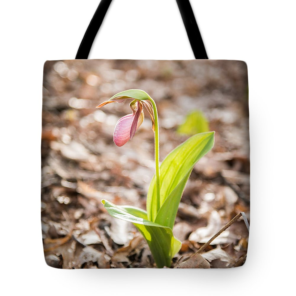 Spring Tote Bag featuring the photograph Sun Slipper by Joye Ardyn Durham
