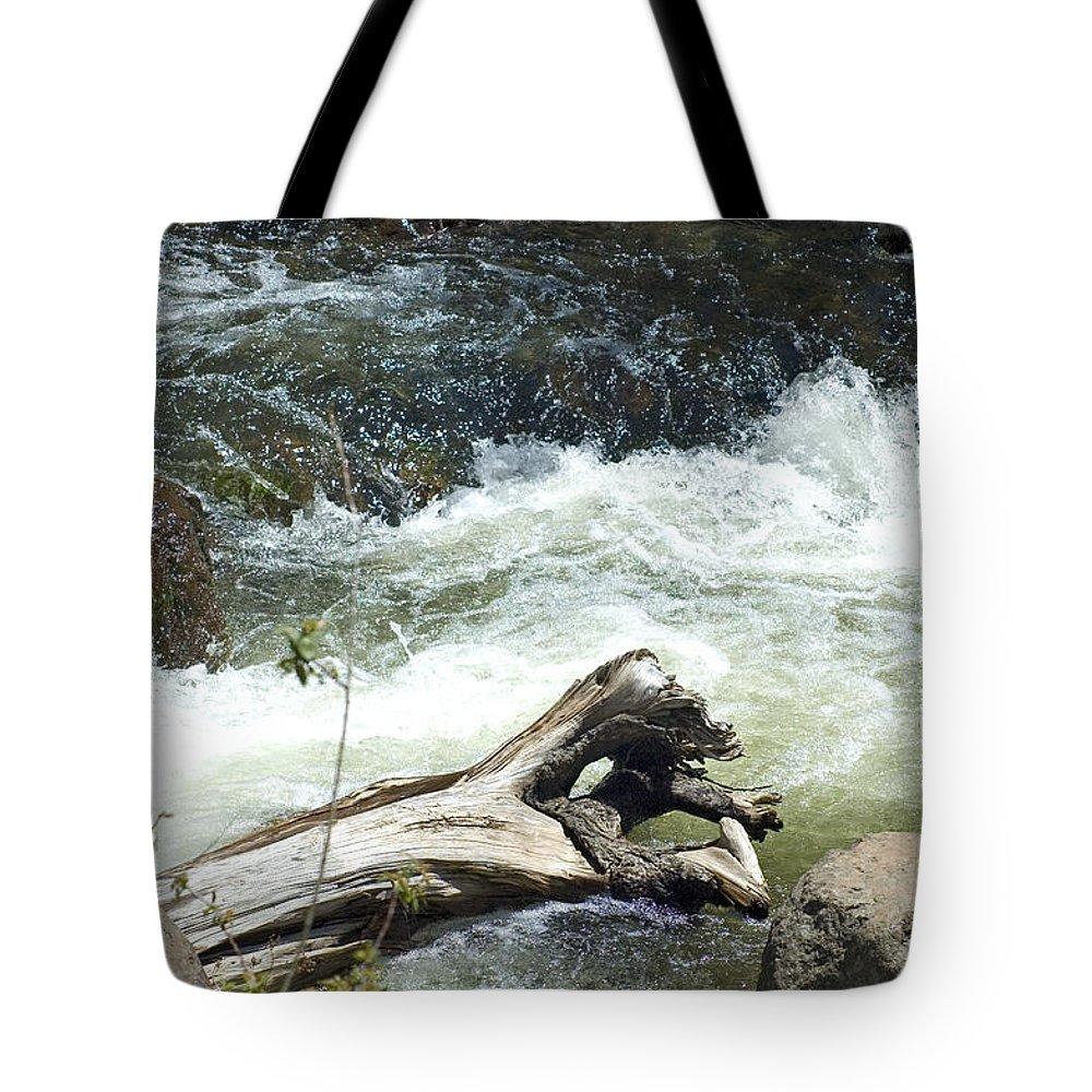 River Tote Bag featuring the photograph Sunbathing by Sara Stevenson
