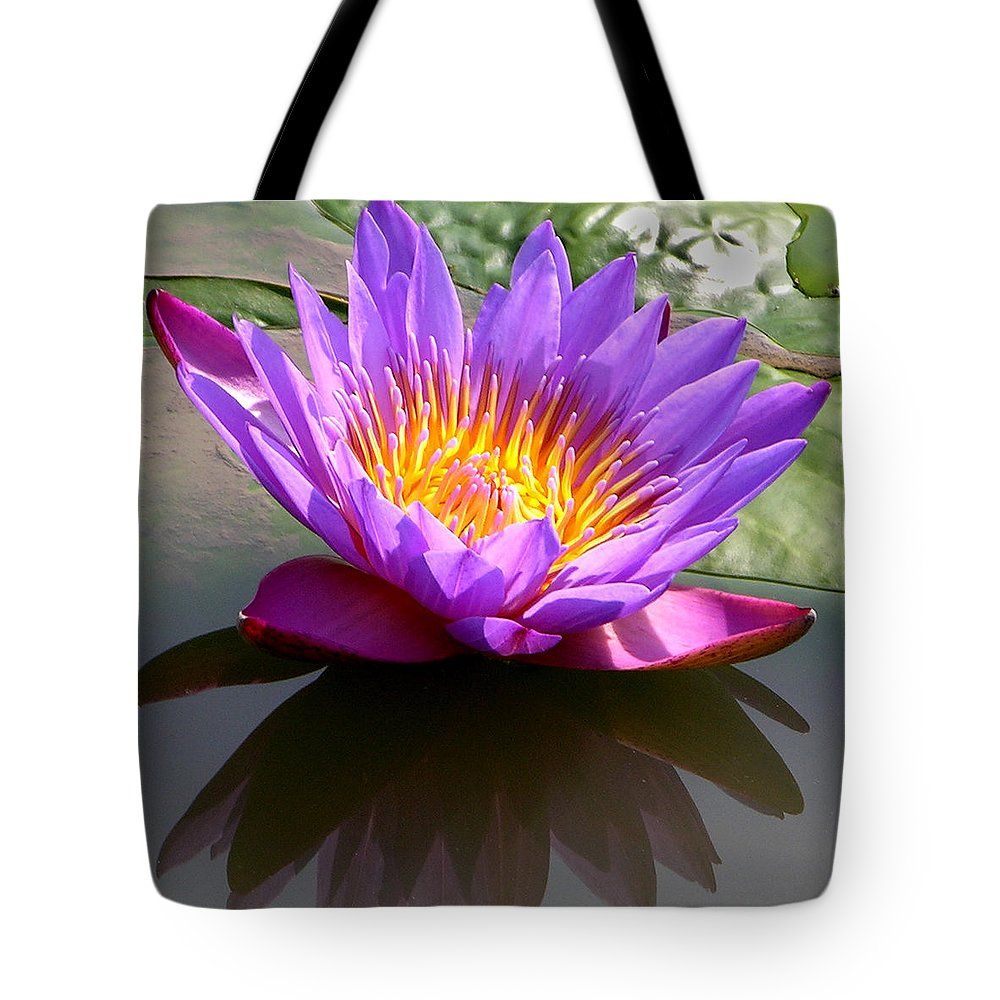 Water Lily Tote Bag featuring the photograph Sunburst Lily by John Lautermilch