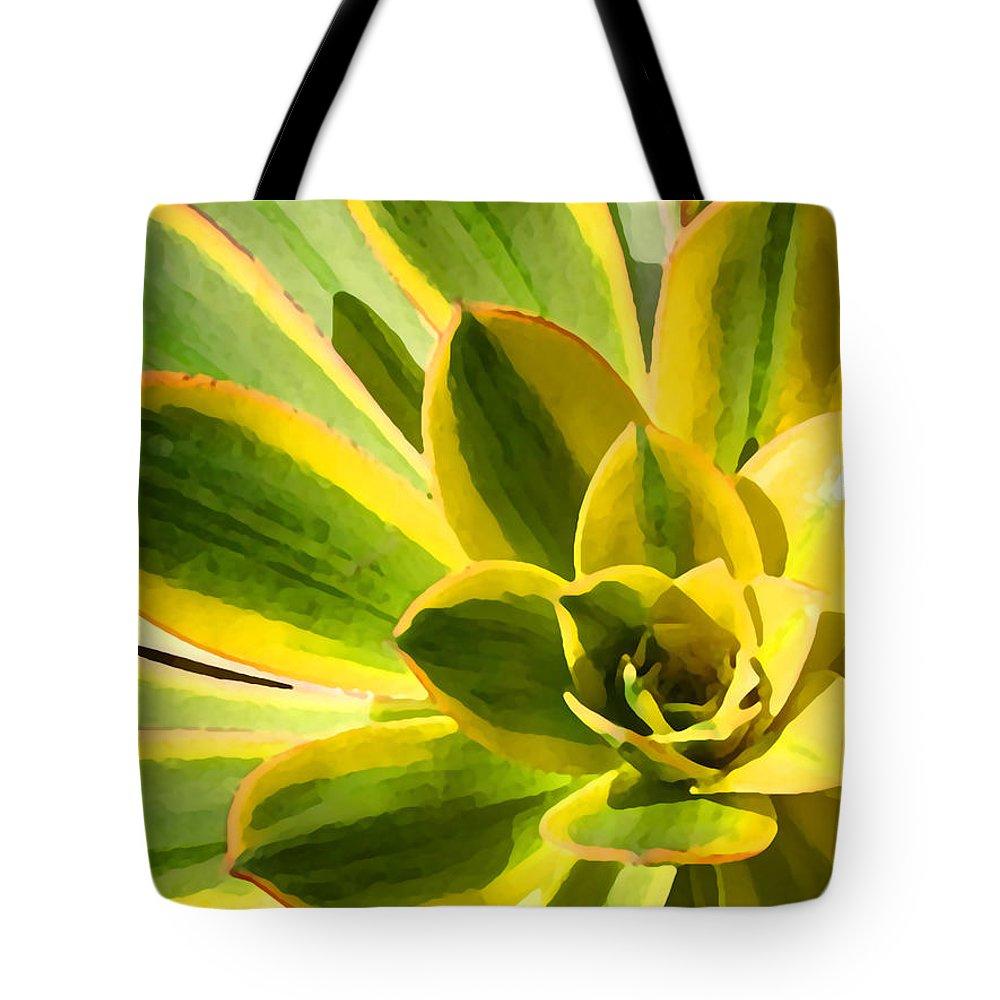 Landscape Tote Bag featuring the photograph Sunburst Succulent Close-up 2 by Amy Vangsgard