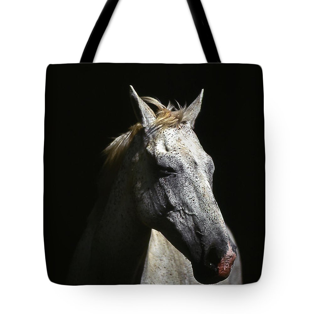 Horse Tote Bag featuring the photograph Sundance by Jim Cazel