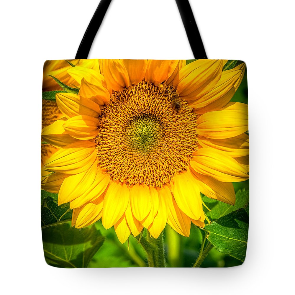 Sunflower Tote Bag featuring the photograph Sunflower 7 by Larry White