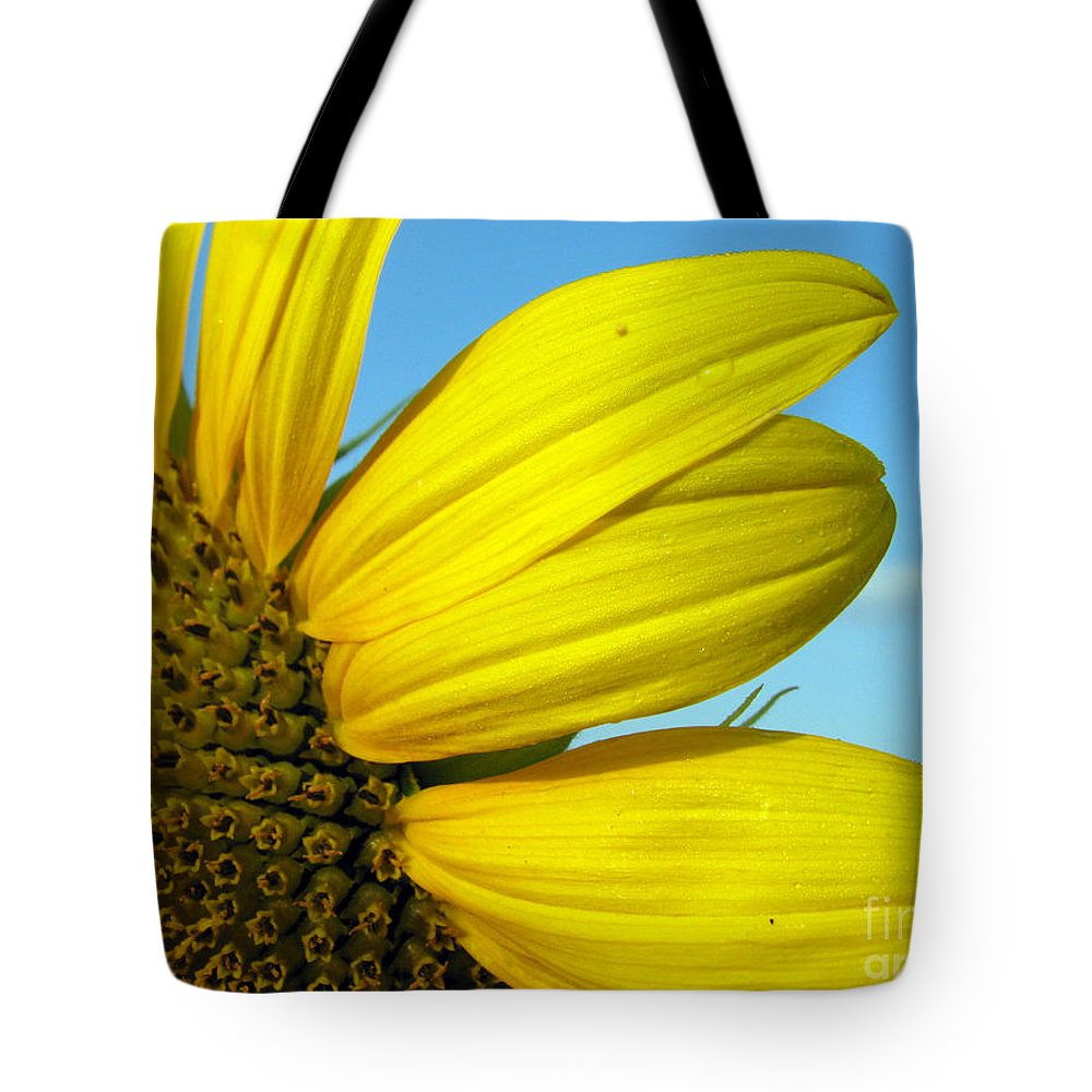 Sunflowers Tote Bag featuring the photograph Sunflower by Amanda Barcon