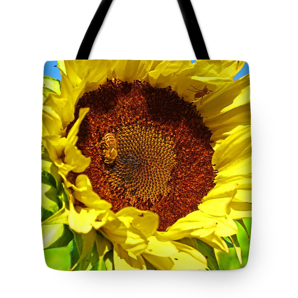 Pastoral Tote Bag featuring the photograph Sunflower And Bee by Heather Coen