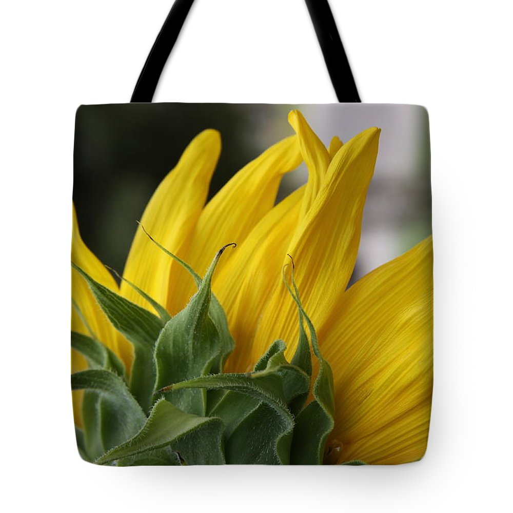 Sunflower Tote Bag featuring the photograph Sunflower by Jill Smith