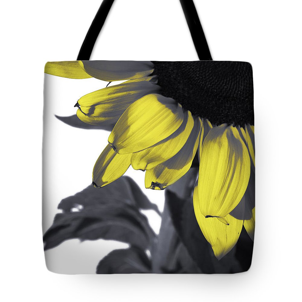 Sunflower Tote Bag featuring the photograph Sunflower by Kelly Jade King