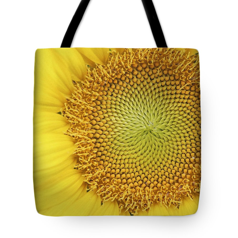 Sunflower Tote Bag featuring the photograph Sunflower by Margie Wildblood