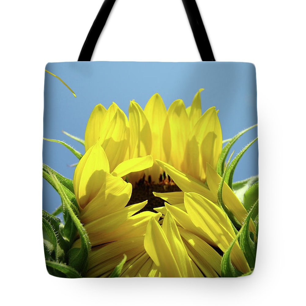 Sunflower Tote Bag featuring the photograph Sunflower Opening Sunny Summer Day 1 Giclee Art Prints Baslee Troutman by Baslee Troutman