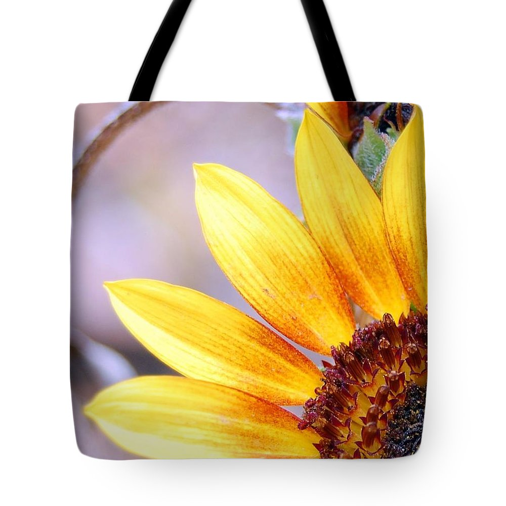 Sunflower Tote Bag featuring the photograph Sunflower Perspective by Amy Fose