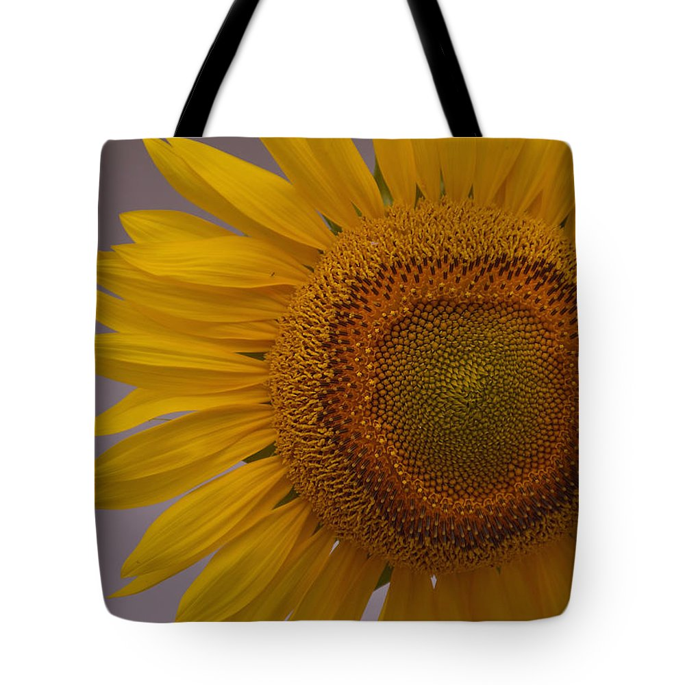 Flowers Tote Bag featuring the photograph Sunflower by Rosebud McGreevy