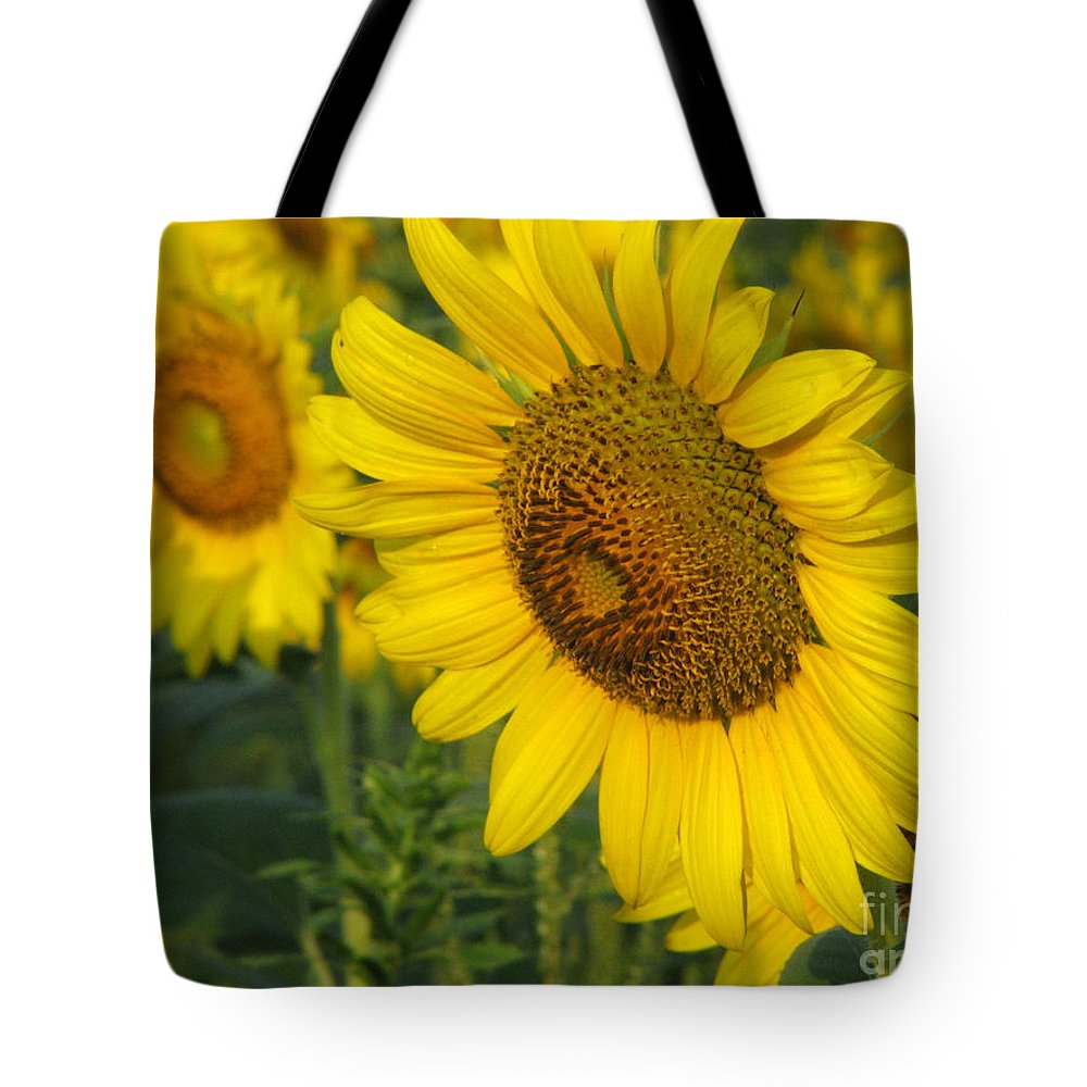 Sunflowers Tote Bag featuring the photograph Sunflower Series by Amanda Barcon