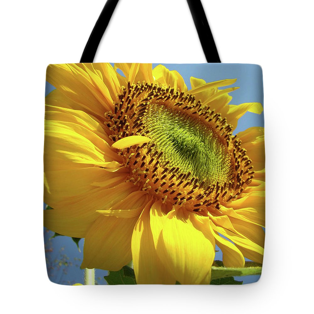 Sunflower Tote Bag featuring the photograph Sunflower Sunlit Sun Flowers 6 Blue Sky Giclee Art Prints Baslee Troutman by Baslee Troutman