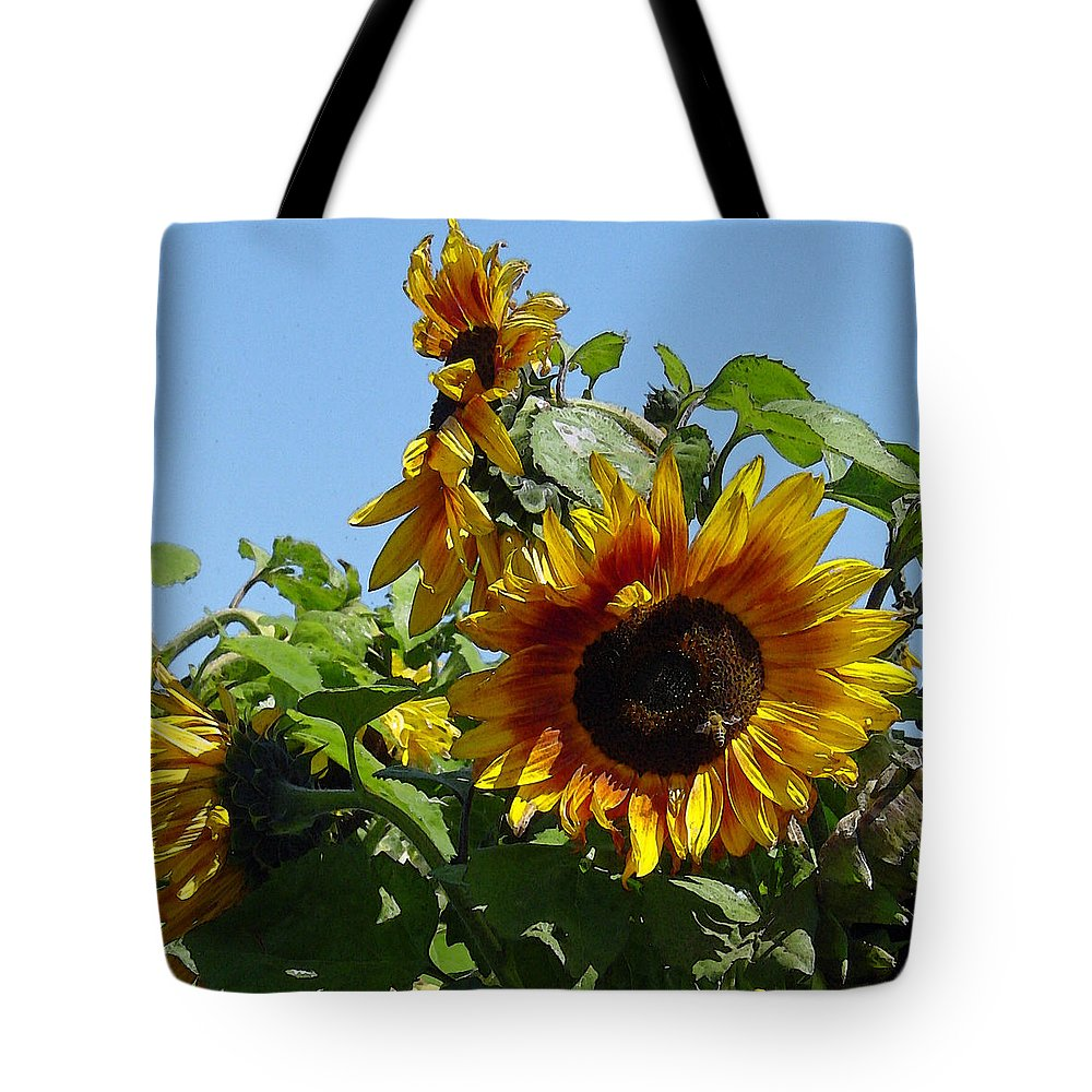 Sunflower Tote Bag featuring the photograph Sunflower Trio by Suzanne Gaff