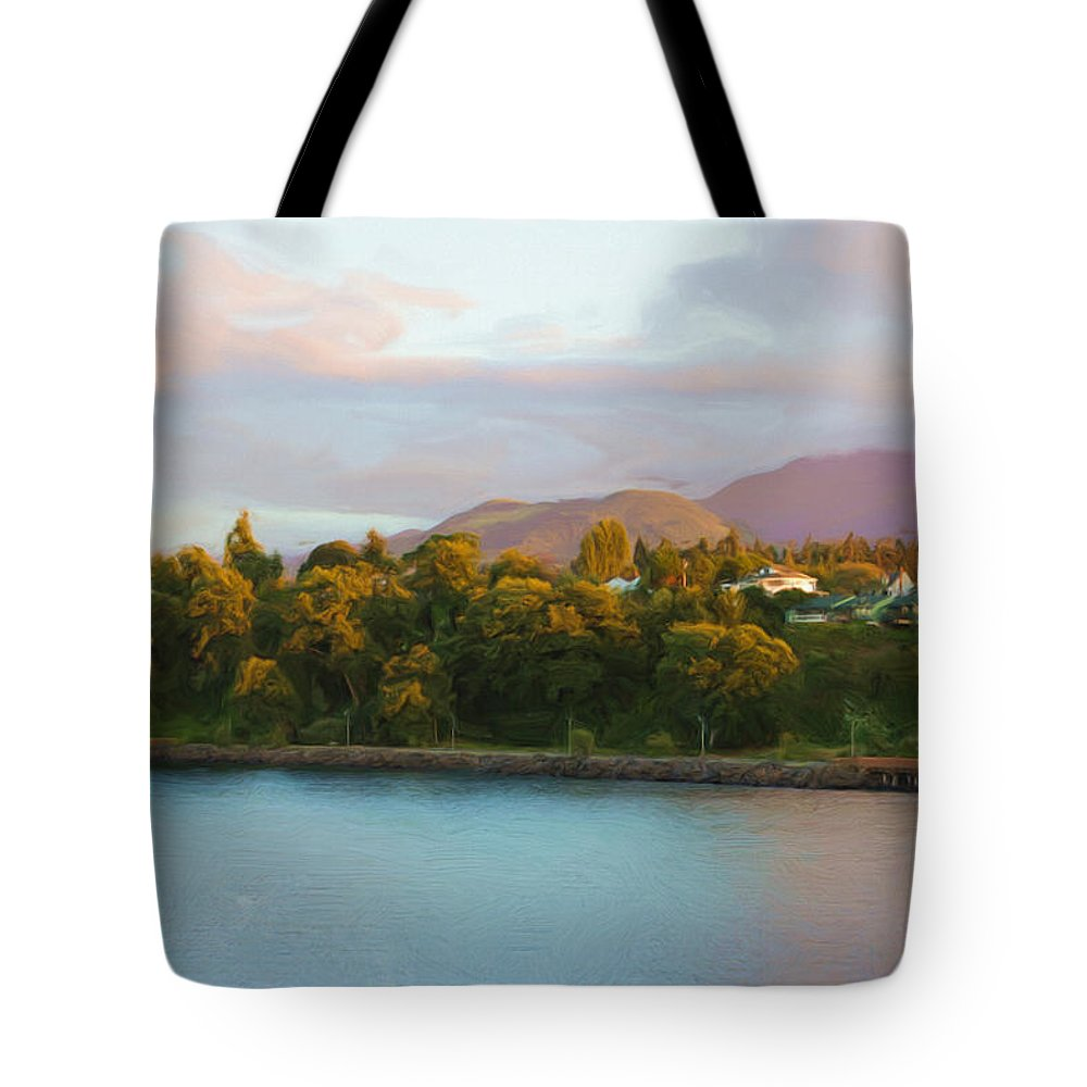 Washington Tote Bag featuring the photograph Sunlight by Heidi Smith