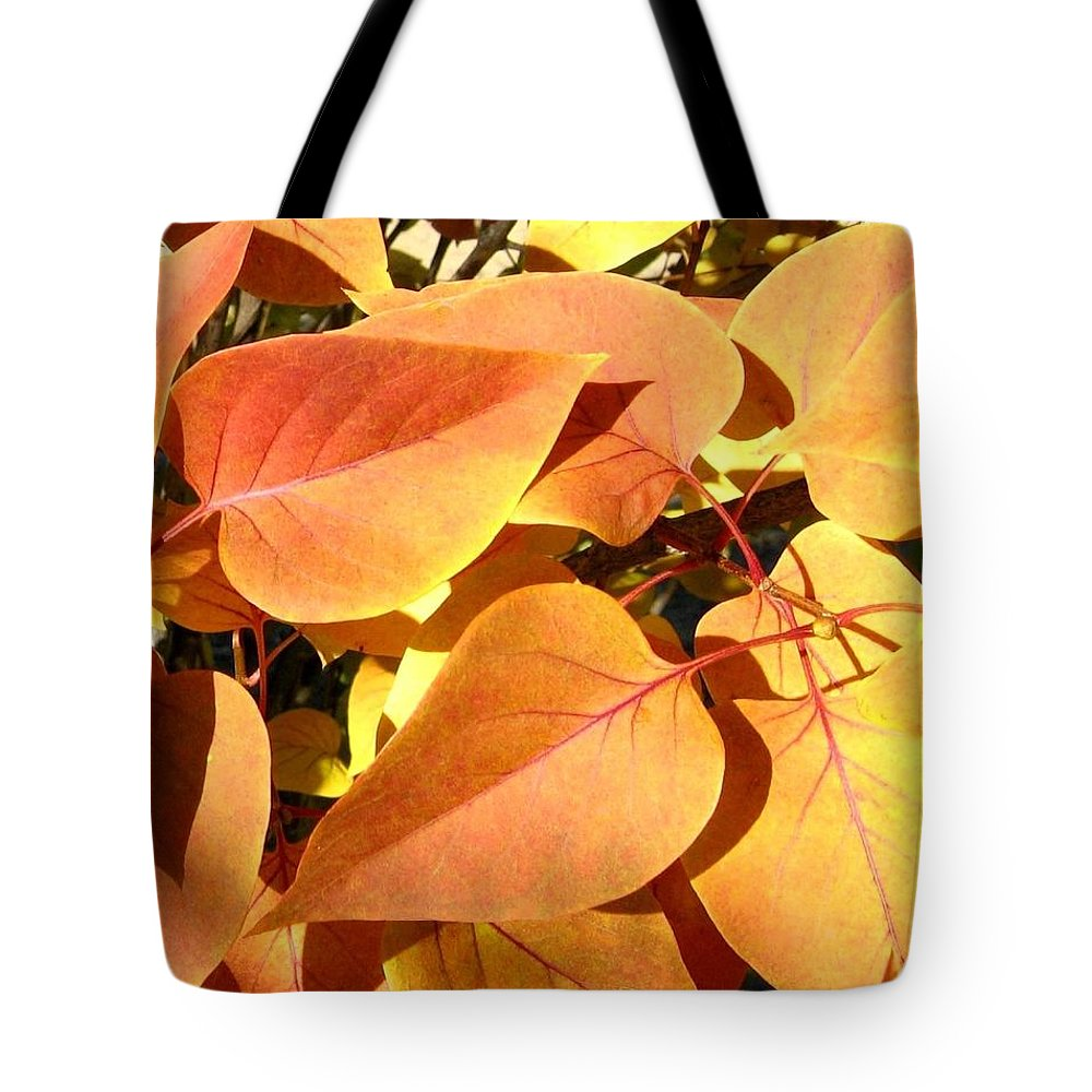 Autumn Tote Bag featuring the photograph Sunlit Fall Lilac by Will Borden