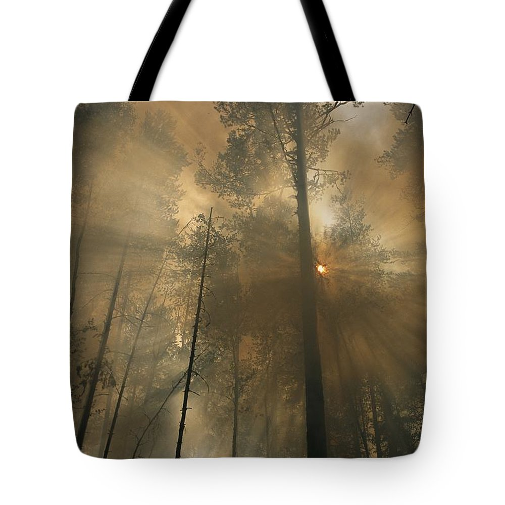 Natural Forces And Phenomena Tote Bag featuring the photograph Sunlit Smoke Whispers The Firefighters by Mark Thiessen