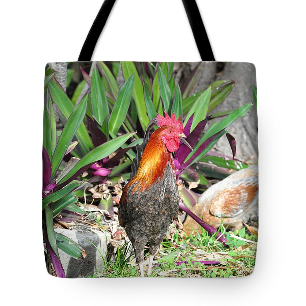 Key West Tote Bag featuring the photograph Sunny Cock by Davids Digits