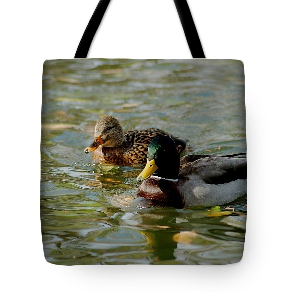 Nature Tote Bag featuring the photograph Sunny Mallard Ducks by D Nigon