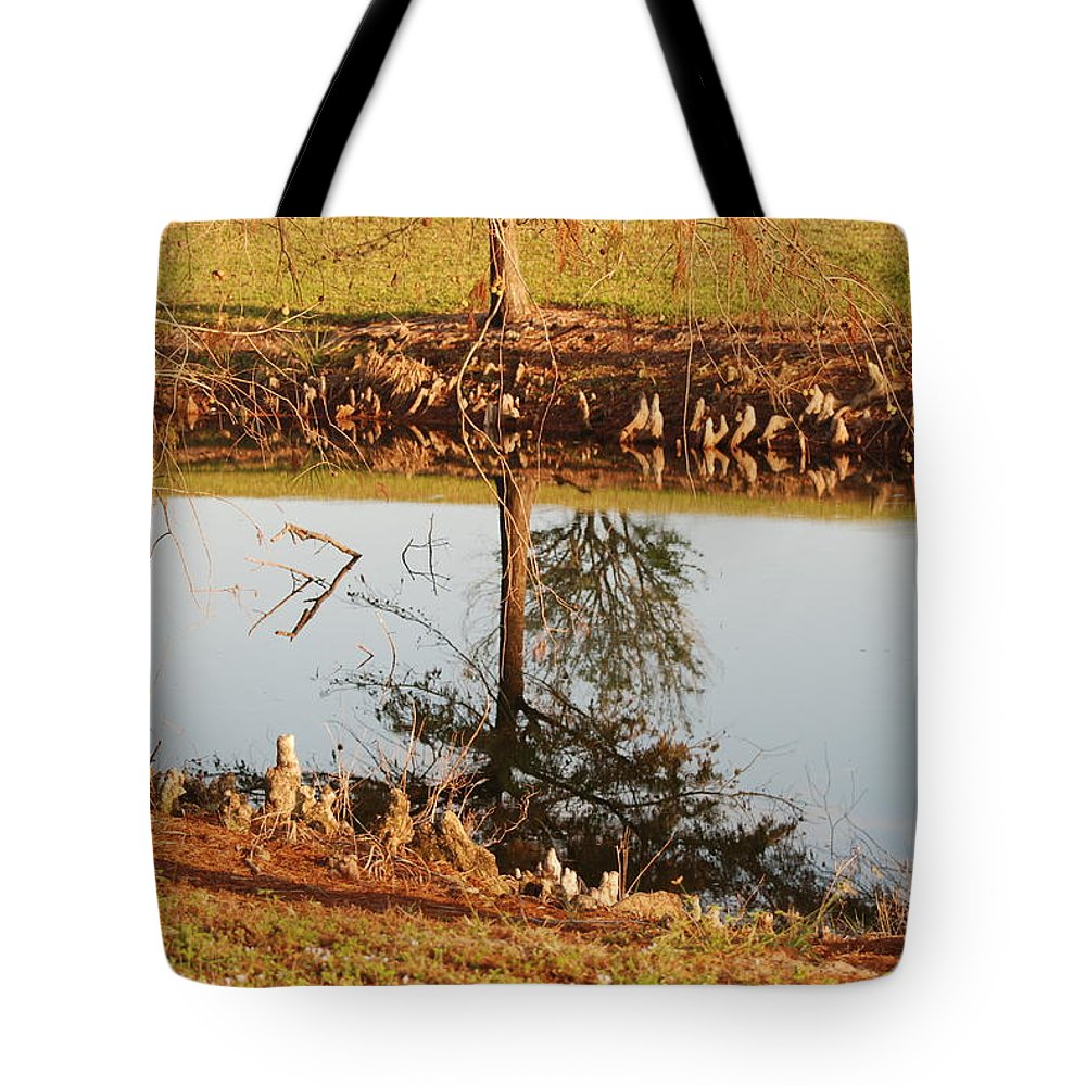 Water Tote Bag featuring the photograph Sunny Pond by Rob Hans
