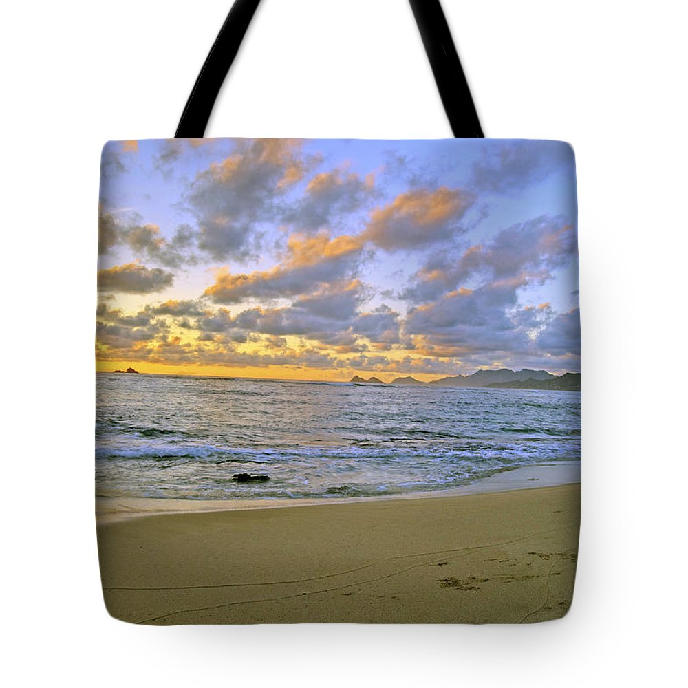 Landscape Tote Bag featuring the photograph Sunrise 6901 by Michael Peychich