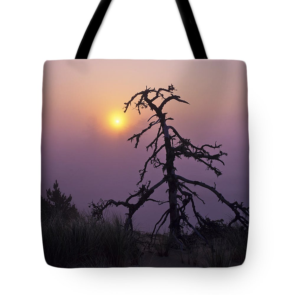Coast Tote Bag featuring the photograph Sunrise And Fog by Robert Potts