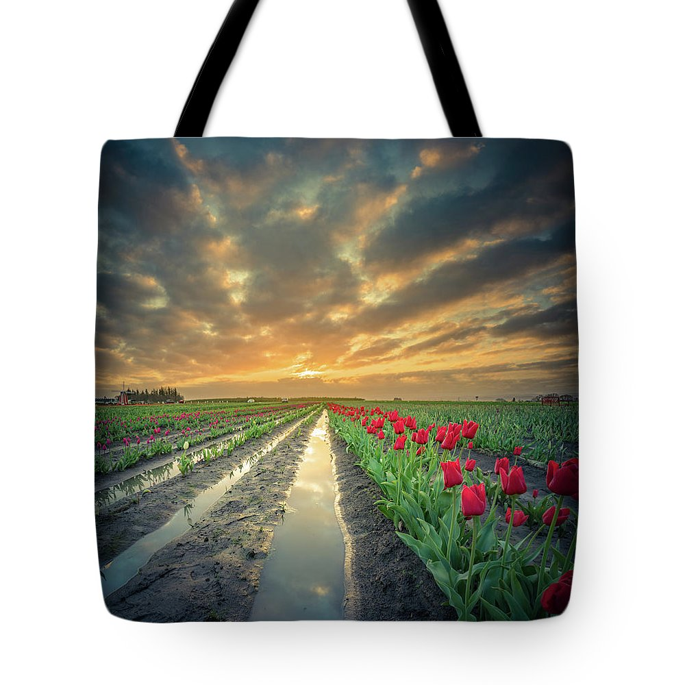 Clouds Tote Bag featuring the photograph Sunrise At Tulip Filed After A Storm by William Freebilly photography
