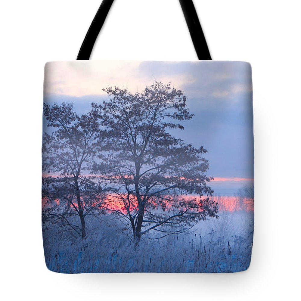 Fog Tote Bag featuring the photograph Sunrise Fog by James BO Insogna