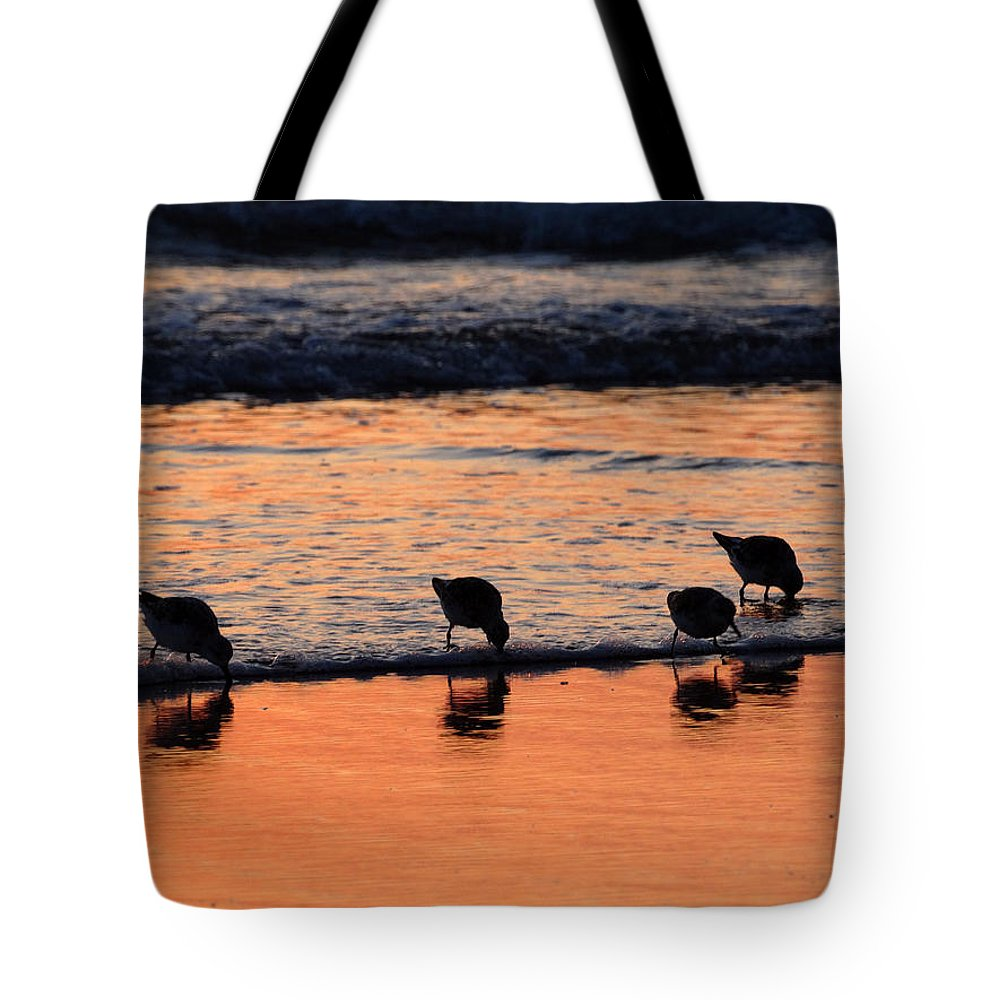 Sunrise Tote Bag featuring the photograph Sunrise Harmony by Dianne Cowen